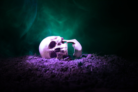 frontview of human skull open mouth on dark toned foggy background. Horror concept. Empty space.