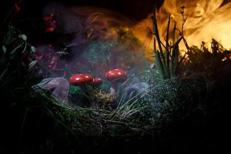 Three red mushrooms. Fantasy Glowing Mushrooms in mystery dark forest close-up. Beautiful macro shot of magic mushroom, fungus. Reklamní fotografie