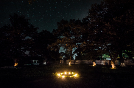 Landscape oh night forest with green meadow in bright starry night or view of milky way in the woodland 版權商用圖片