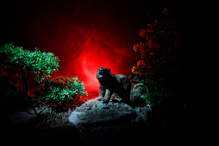Horror view of big bear in forest at night. Angry bear behind the fire cloudy sky. The silhouette of a bear in foggy forest dark background Фото со стока