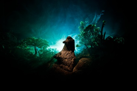 Horror silhouette of scary figure in forest at night. Female demon. Demons coming. Slhouette of devil or monster figure on a background of fire. Horror view