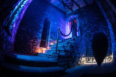 Inside of old creepy abandoned mansion. Silhouette of horror ghost standing on castle stairs to the basement. Spooky dungeon stone stairs in old castle with light. Horror Halloween concept