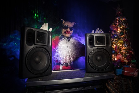 Funny 2019 year of pig concept. Dj Santa with pig mask at Christmas party mixing on New Years Eve event. Disco lights in the background.