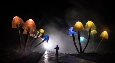 Walking through fantasy giant glowing mushroom forest. Silhouette of a man standing in the middle of the road on a misty night with giant fantasy glowing mushrooms on both sides of road. Standard-Bild