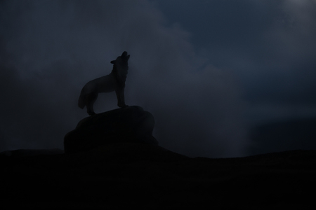Silhouette of howling wolf against dark toned foggy background. Halloween horror concept. Artwork decoration. Selective focus