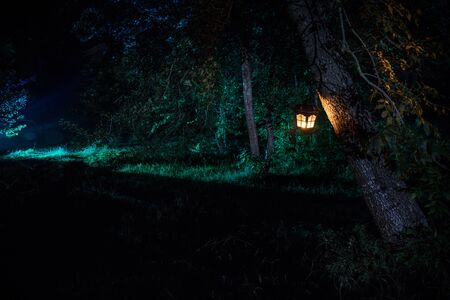 Horror Halloween concept. Burning old oil lamp in forest at night. Night scenery of a nightmare scene. Selective focus. Imagens