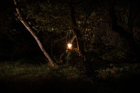 Horror Halloween concept. Burning old oil lamp in forest at night. Night scenery of a nightmare scene. Selective focus. 写真素材 - 128832169
