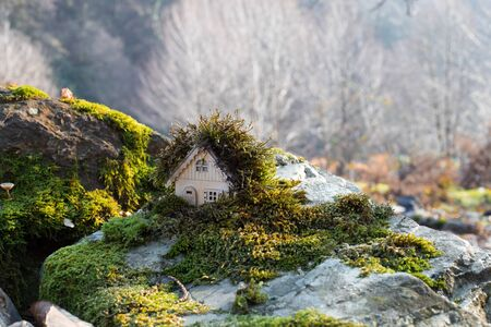 Christmas and New Year miniature house at forest in the sunlight. Little toy house close up. Festive background. Christmas decorations. Holiday and celebration concept. No snow 版權商用圖片