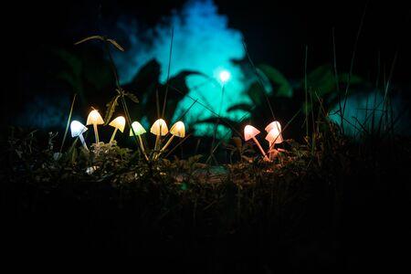 Champignons rougeoyants fantastiques en gros plan de forêt sombre mystère. Belle photo macro de champignon magique ou de trois âmes perdues dans la forêt d'avatar. Guirlande lumineuse sur fond de brouillard. Mise au point sélective Banque d'images