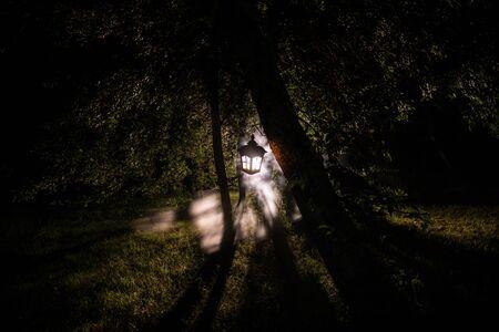Horreur Halloween concept. Brûler une vieille lampe à huile dans la forêt la nuit. Paysage nocturne d'une scène de cauchemar. Mise au point sélective.
