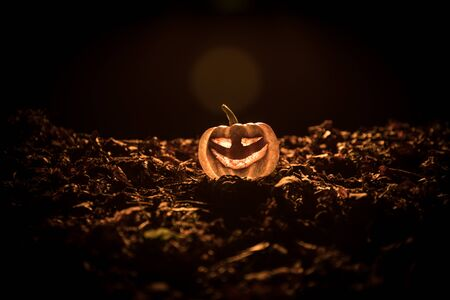 halloween jack-o-lantern on autumn leaves. Scary Halloween Pumpkin looking through the smoke. Glowing, smoking monster pumpkin from depths of hell Zdjęcie Seryjne