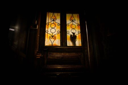 Silhouette of an unknown shadow figure on a old wooden door through a closed glass door. The silhouette of a human in front of a window at night. Scary scene halloween concept