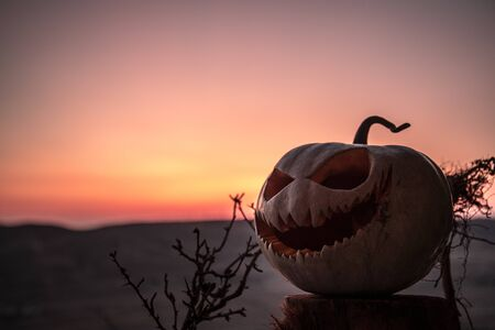 Happy Halloween! Pumpkins on wooden table on sunset sky background. Selective focus