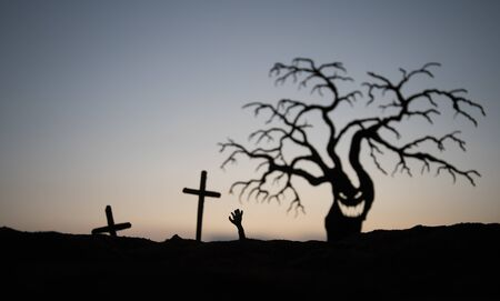 Silhouette some zombies on the cemetery walking around at sunset. Silhouette of scary Halloween tree with spooky face. Horror Halloween concept. Selective focus