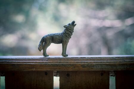 Howling wolf in the forest. Mini wolf figure. Wild animal concept. Selective focus