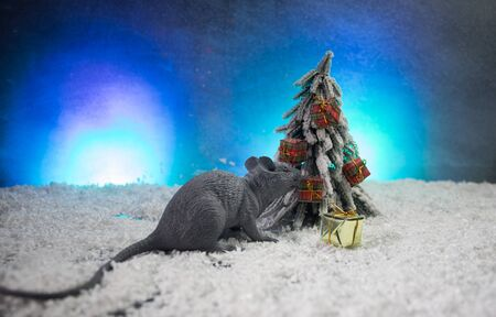 decorative cute brown rat around with a Christmas decor and Santa Claus. The rat is a symbol Of the new year 2020 Stock Photo