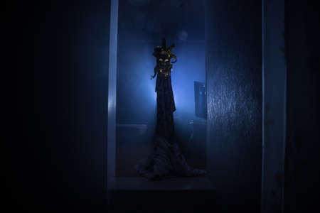 Silhouette of an unknown shadow figure on a door through a closed glass door. Spooky silhouette girl at night with smoke in background 写真素材