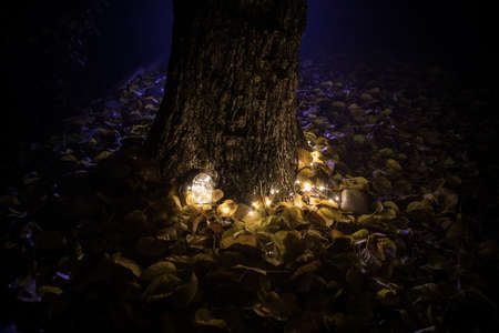 Beautiful view of bottle with light at night at the garden. Lamp Magical fairy dust potion in bottle in the forest. Long exposure shot. Selective focus Archivio Fotografico