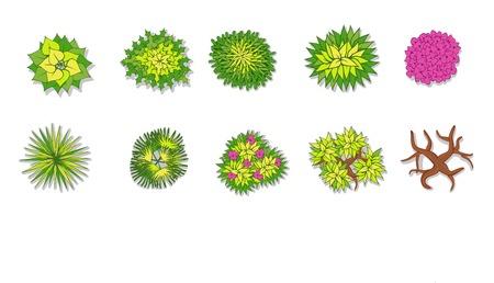 상단: 나무, 식물, 조경 디자인을위한 꽃 항목 평면도