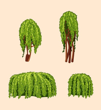 set of isolated willow trees and bushes Illustration