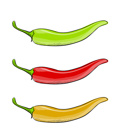 Hot chilli pepper vector set isolated on white background. Red, yellow and green. Illustration
