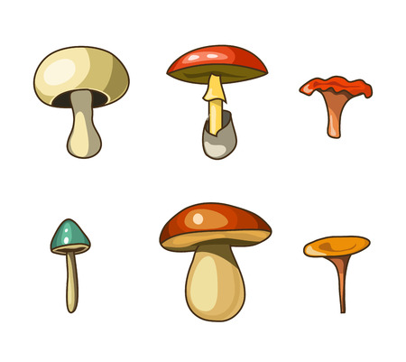 Vector cartoon mushrooms, isolated elements Illustration