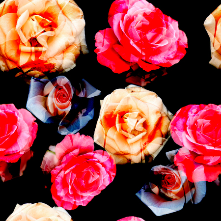 Seamless floral pattern with of red and orange roses on black background.