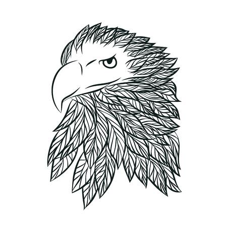 Hand drawn head of Eagle Vector Illustration