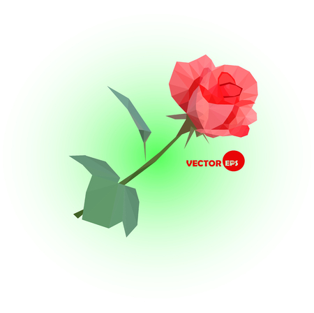 abstract rose: Red rose. an abstract rose made in polygonal style. Geometric low poly illustration. Illustration
