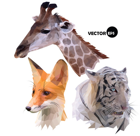 set of portraits of wild animals a giraffe, white tiger, red Fox realistic in polygonal, low poly, origami style.
