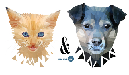 enmity: Dog and cat face portrait, love Pets, friendship and confrontation. Kitten and puppy, fun animals. Zoo collections. Dog, cat face on the white, made in triangular Low Poly style for print design. Illustration