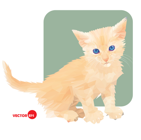 kitten small white: Little kitten in polygonal style on white and green background. Pet cat. Red cat. Print the cat for clothing and t-shirts, childrens books, cartoon. Favorite small cat. Illustration