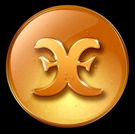 Pisces zodiac button icon photo