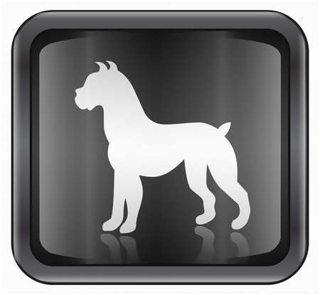 fortunetelling: Dog Zodiac icon, isolated on white background. Stock Photo