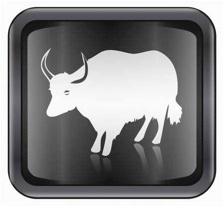 buey: Zodiac buey icono, aisladas sobre fondo blanco.
