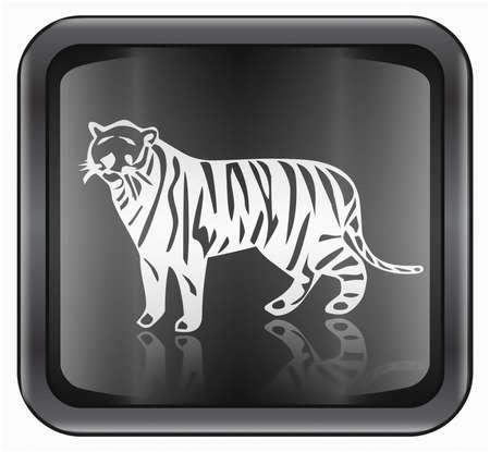 fortunetelling: Tiger Zodiac icon, isolated on white background.