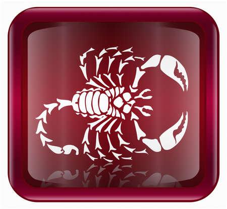 escorpio: Escorpio zodiac icono rojo, aisladas sobre fondo blanco