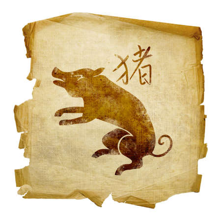 boar: Pig Zodiac icon, isolated on white background.