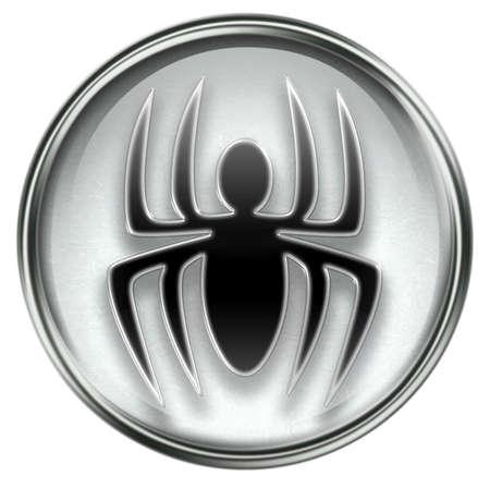 Virus icon grey, isolated on white background. photo