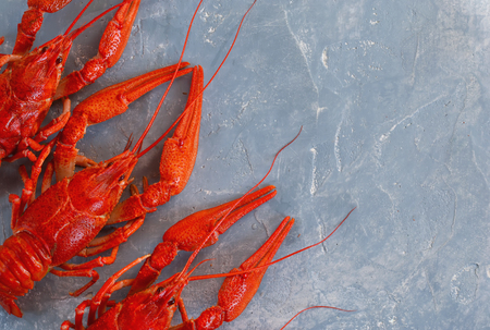 Fresh boiled crayfish with dill on a concrete background. Top view.