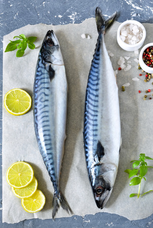 Fresh, raw mackerel with lemon and spices on a concrete background Foto de archivo