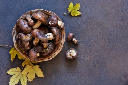 Set of mushrooms in a basket on a concrete background. View from above.