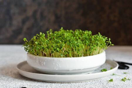 Watercress in a plate on the kitchen table. Standard-Bild