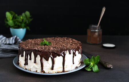 Vanilla cake with chocolate icing, chocolate chips and mint on a dark background. Stock Photo