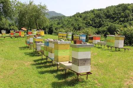 apiary: Bee apiary in a mountain monastery Stock Photo