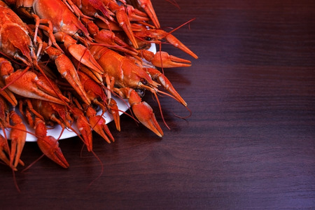 Boiled crawfish on plate close up , dark wooden background
