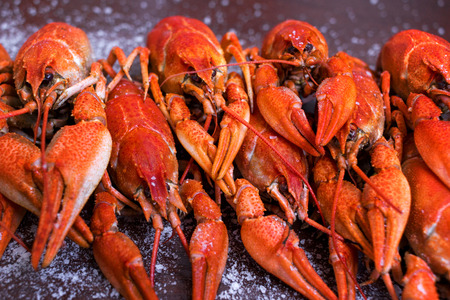 Crayfish with salt on a dark wooden table.