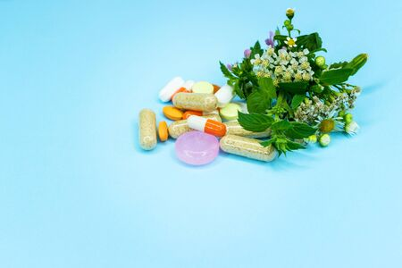 Green pharmacy, pills from plants on a blue background