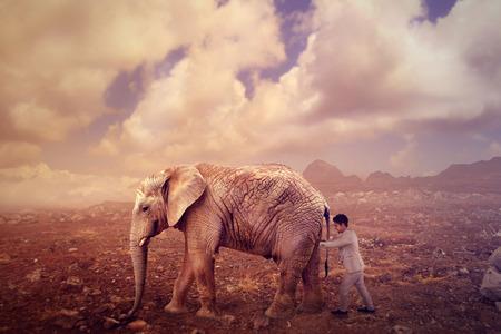 empujando: hombre de negocios que empuja un elefante