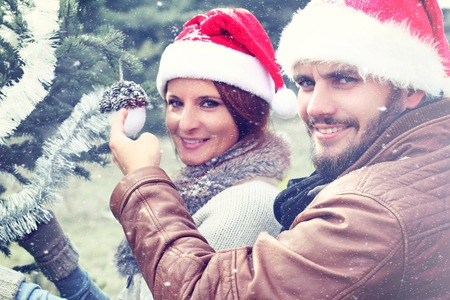 decorating: Couple decorating a Christmas tree